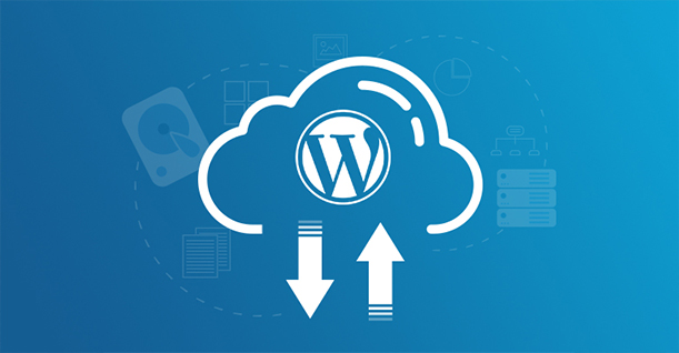 Bagaimana Cara Backup WordPress?